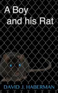 boy-rat-mesh-web
